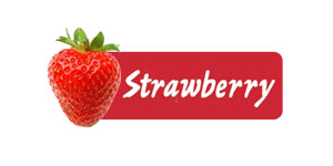 Strawberry Lettings Logo